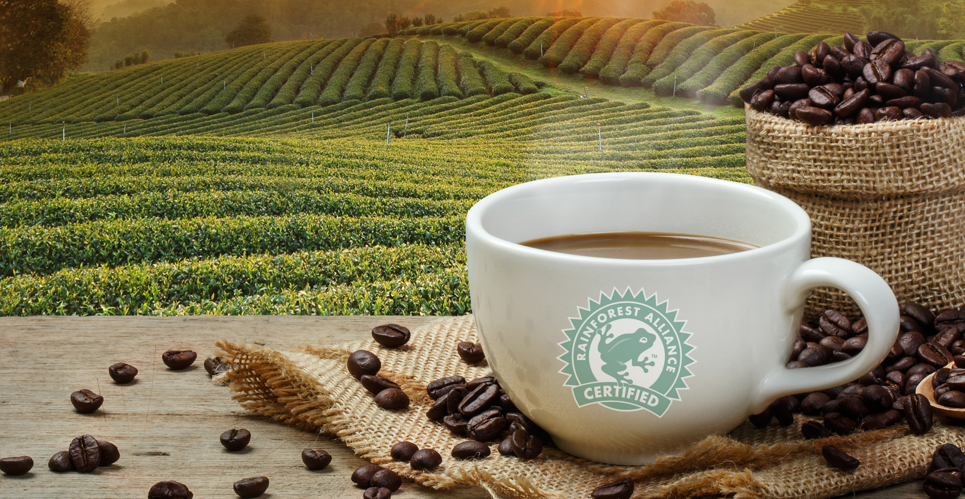 Serving an incredible cup of Premium Rainforest Alliance Certified Coffee. Better for you, better for the planet.